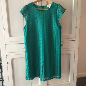 EVERLY GREEN LACE SHIFT DRESS